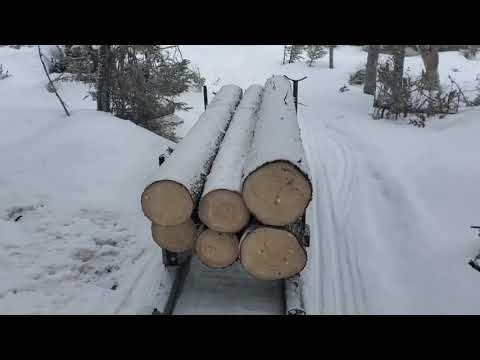 Skandic 900 ace Widetrack pulling logs with bob sleds